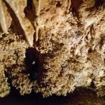 Venetz Cave