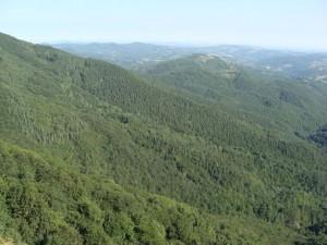 """Natural Park """"Balgarka"""""""