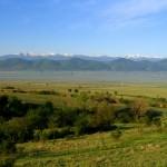 The town of Dolna Banya