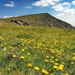 "Natural Park ""Rila Monastery"""