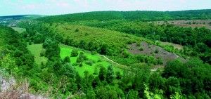 "Historical and archaeological reserve of ""Sboryanovo"""