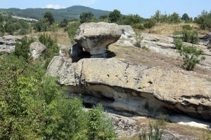 Rock mushrooms in Dobromirtsi
