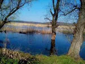Biosphere Reservation of Srebarna