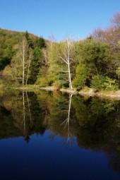 Boyana – Boyana Lake